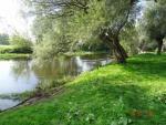 spływ kajakowy Bzurą