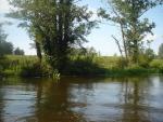 spływ kajakowy Mereczanką (Merkys)