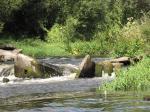 spływ kajakowy Wkrą